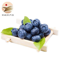 京東PLUS會員:振豫 新鮮藍莓 125g  *4件
