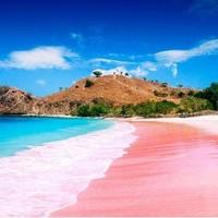 粉色沙滩!看大蜥蜴!全国多地-印度尼西亚巴厘岛+科莫多岛8天6晚半自助游