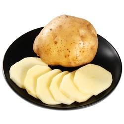 正宗巫溪洋芋迷你黄心小土豆马铃薯5斤2019新鲜蔬菜批发非转基因