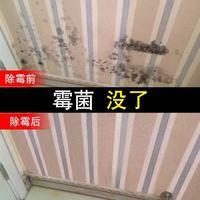 XIAYANG 夏阳 白墙霉菌清洁剂 (500ml)