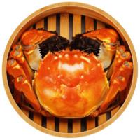 ZHENCHENG 珍澄 大闸蟹6只装 公蟹2.5两+母蟹2.5两 *2件