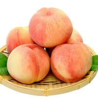 阳山 水蜜桃 8两-9两超大桃 6个礼盒装 净重5斤多