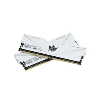 GALAXY 影驰 大师系列 HOF OC Lab 台式机内存 (16GB、DDR4 3600)