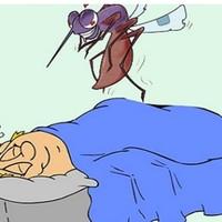 驱蚊,迫在眉睫,这个夏天,不被咬!