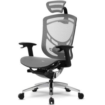 Ergoup 人体工学电脑椅 灰色