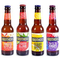 兄弟西打  女士精酿啤酒 4瓶装