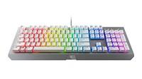 Razer 黑寡妇 X Chroma 水银版 RGB 幻彩机械键盘