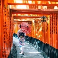 双古都巡礼!全国多地-日本大阪+京都+奈良6天5晚半自助游