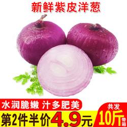 第二件4.9元】19年时令蔬菜新鲜红皮紫皮洋葱大葱圆葱红葱头5斤装