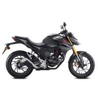 新大洲本田 CBF190R 摩托车 标准版 珍珠黑/灰黑
