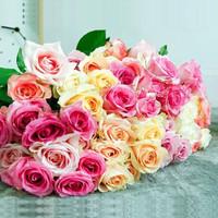 MissMolly 鲜花昆明花卉 玫瑰花 20枝