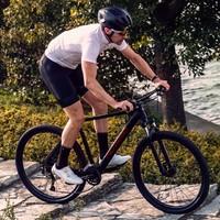 小牛 NIU AERO 山地自行车
