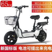 道玛 新国标电动自行车48v 电池可取