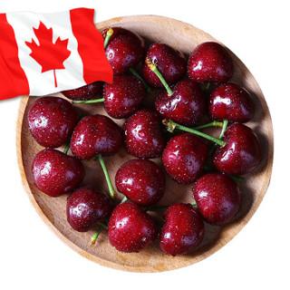 加拿大进口车厘子 1磅装 J级 果径约26-28mm 生鲜进口水果樱桃 *4件