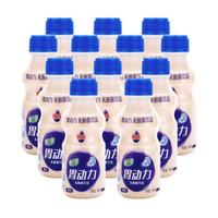 椰汁岛 胃动力乳酸菌饮品 340ml*12瓶