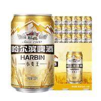 Harbin 哈尔滨啤酒 经典小麦王 330ml*12听