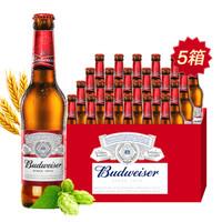 Budweiser 百威 瓶装啤酒 美式拉格 经典醇正330ml*24瓶*5