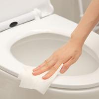 FaSoLa A4887 一次性随身装便携式用品旅行马桶消毒清洁湿巾纸