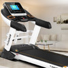 YIJIAN 亿健 高端商用级跑步机 家用静音折叠健身器材 2018新款S900 蓝屏多功能     S900