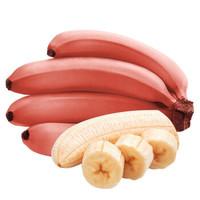 百世福园 福建红皮美人香蕉  5斤