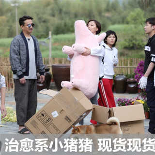 GreenGemWay 沙发猪抱枕 1.1米粉色