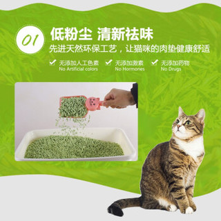 NEO CLEAN 天净 贝贝猫 猫砂 6L 无尘除臭猫砂原味豆腐砂原味 绿色