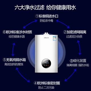 Vanward 万和 JSG24-310W12 12升燃气热水器 液化气