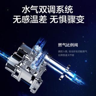 Midea 美的 JSQ25-H1S 12L 燃气热水器 天然气