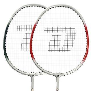 DHS 红双喜 1016铝合金羽毛球拍 一副2只装送拍包 娱乐家用羽拍 红双喜1016(赠6球+手胶*2+拍套)