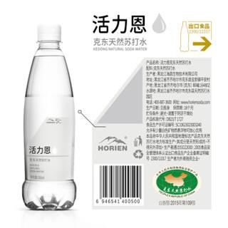 HORIEN 活力恩 苏打水 500ml/瓶X15