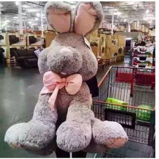 COSTCO 好市多 兔子公仔大耳兔大号毛绒玩具玩偶1.2米 灰色