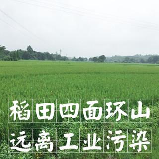 shangjiangjun 上将军 长粒香米 15kg