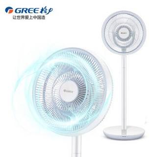 格力(GREE)电风扇 落地扇直流变频静音空气循环风扇智能遥控台立扇 FSZ-30X63Bg7