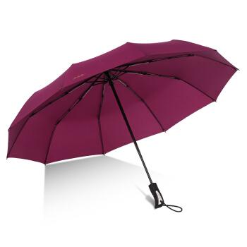 天堂 30729E 晴雨两用伞 酱红