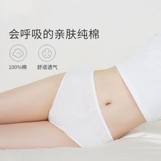 佳韵宝 一次性内裤   纯棉 产妇8条装 XXL(腰围93-103cm)150斤以上 均码(适合臀围80-120cm) JAD03015