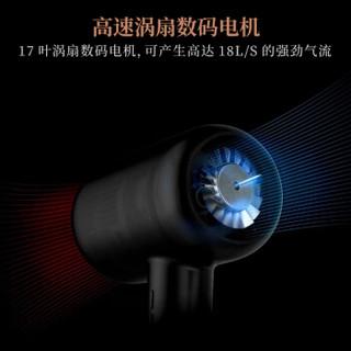 LEXY 莱克 F6 电吹风机 (脂红、1800W)