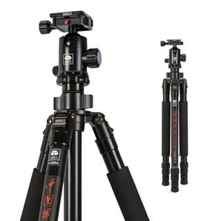 SIRUI 思锐 R-2004脚架 + G-20KX云台 + 相机防水包