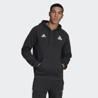 adidas 阿迪达斯 TAN GR SWT HOOD DT9435 男子套头衫