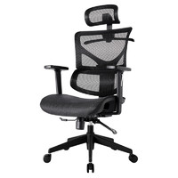 爱特屋 DNY001 人体工学办公椅 (铝合金)