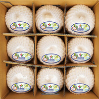 SUHO WHOLE FOODS 苏洪鲜食 泰国椰青 9个装