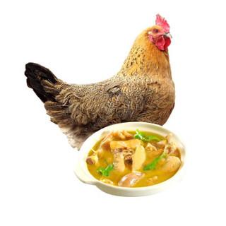 对面小城 散养老母鸡 1kg