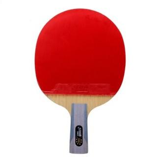 DHS 红双喜 乒乓球拍单拍六星级狂飙王学生专业级6星直拍横拍兵乓球成品拍  6002/6006