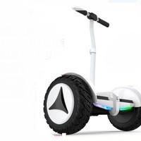 领奥 电动自平衡车两轮成人儿童智能体感成年上班代步越野双轮胎10寸平行车带手扶杆 54V白   领奥小旋风