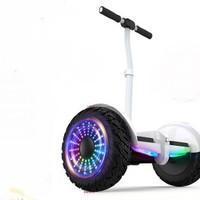 领奥 电动自平衡车两轮成人儿童智能体感成年上班代步越野双轮胎10寸平行车带手扶杆54V白 领奥小旋风