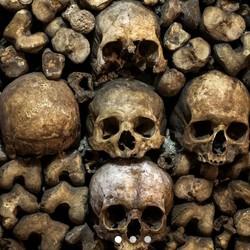 藏骨堂冒险之旅!巴黎地下墓穴免排队门票