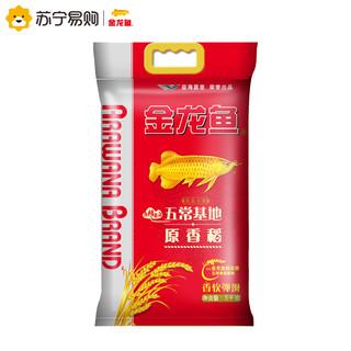 金龙鱼5kg 五常稻花香原粮 原香稻东北大米 10斤装