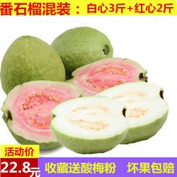 农家现摘番石榴芭乐白心3斤+红心2斤新鲜水果清脆香芭乐5斤番石榴