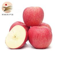 红富士苹果 果径70-80mm 5斤