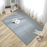 兴宇 珊瑚绒地毯 短绒40*120cm