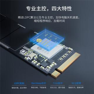 ORICO 奥睿科 迅龙 V500 迅龙M.2固态硬盘 (256GB、M.2)